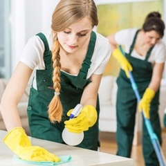 House Cleaning Services St. Petersburg FL