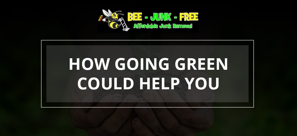 Bee-Junk-Free---Month-8---Blog-Banner.jpg