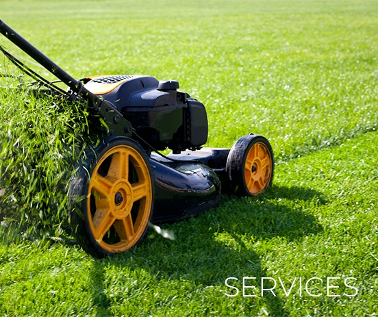 Best Lawn Care Calgary