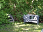 Wooden Bench in Garden - Dementia Care Home for Women Richmond Hill - Memory Lane Home Living Inc.