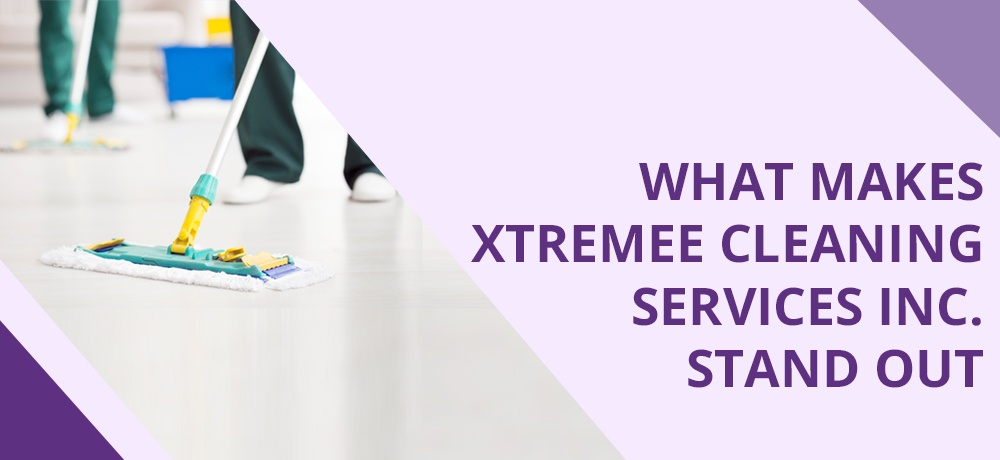Xtremee Cleaning - Month 2 - Blog Banner.jpg
