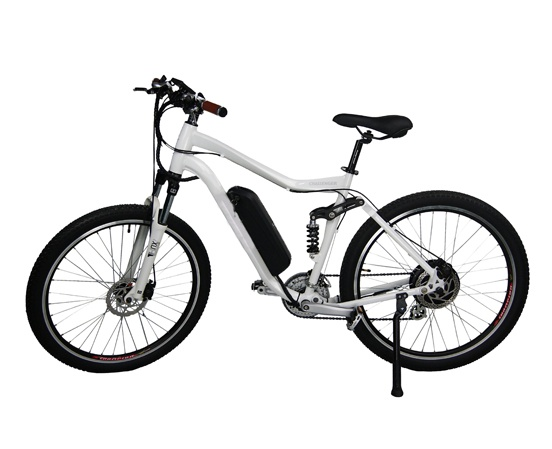 Standard E-Mountain Bike