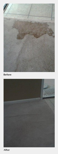 A Carpet Before and After its Cleaned - Carpet Cleaning Atlanta by Preferred Carpet Cleaning and Floor Care