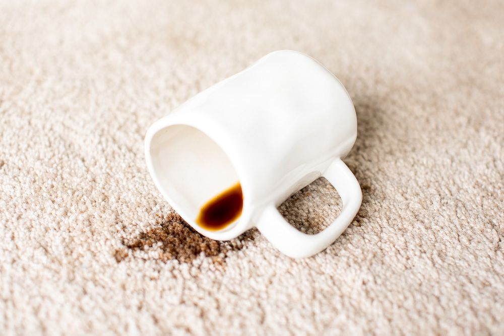 removing-coffee-stains-from-carpet-1901013-01-Horizontal.-c46ae0f5d04a480dab57570b7c065a52