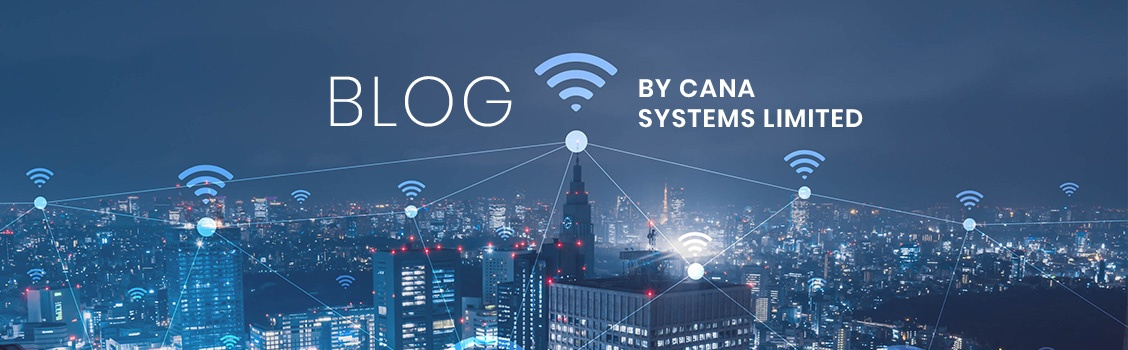 Blog by Cana Systems Limited