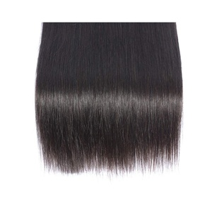 SAJANDA Straight Human Hair Bundles with Closure