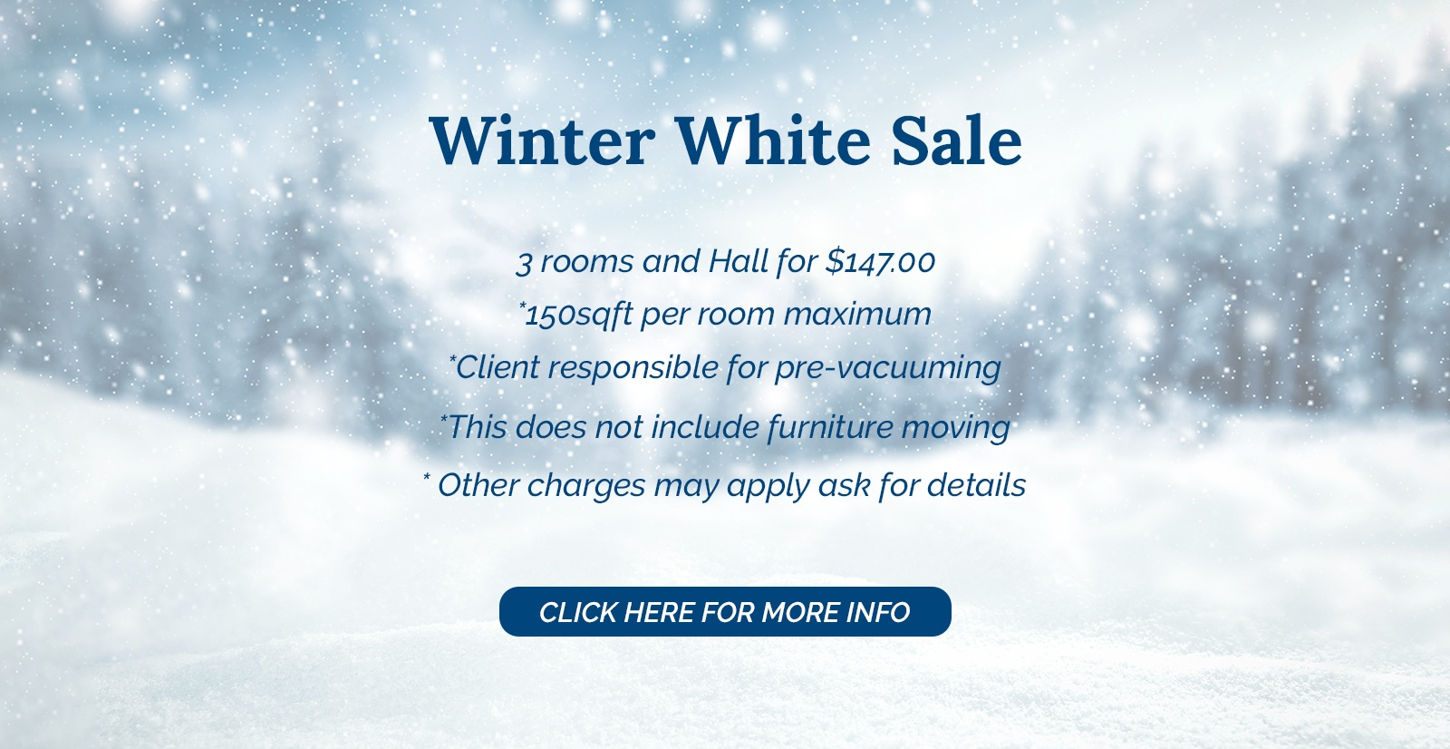 Winter White Sale at Carpet Masters -  Carpet Cleaning Company in Cambridge