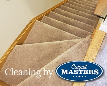 Professional Carpet Cleaning in Cambridge