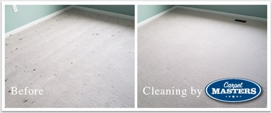 Before and After Carpet Cleaning Services Cambridge by Carpet Masters