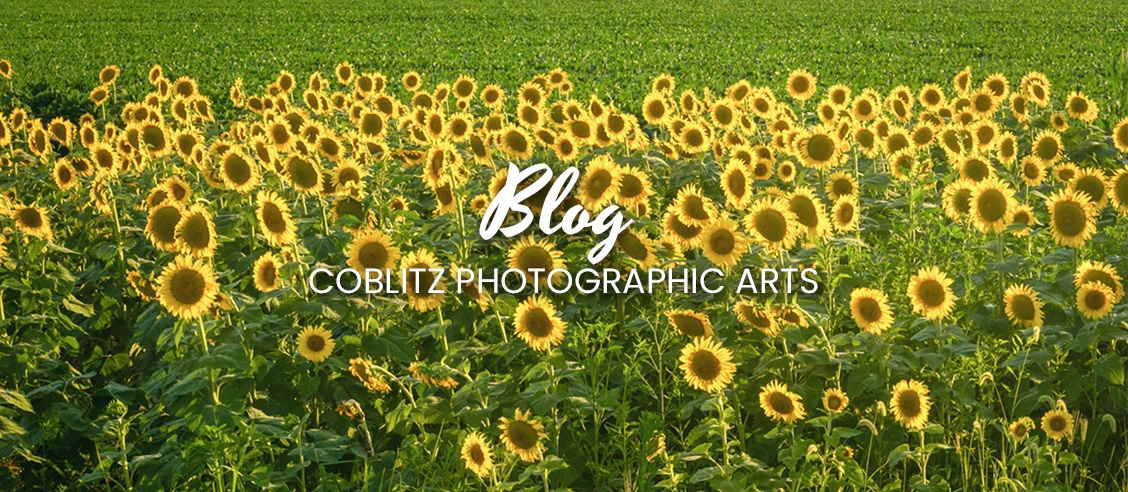 Blog by Coblitz Photographic Arts