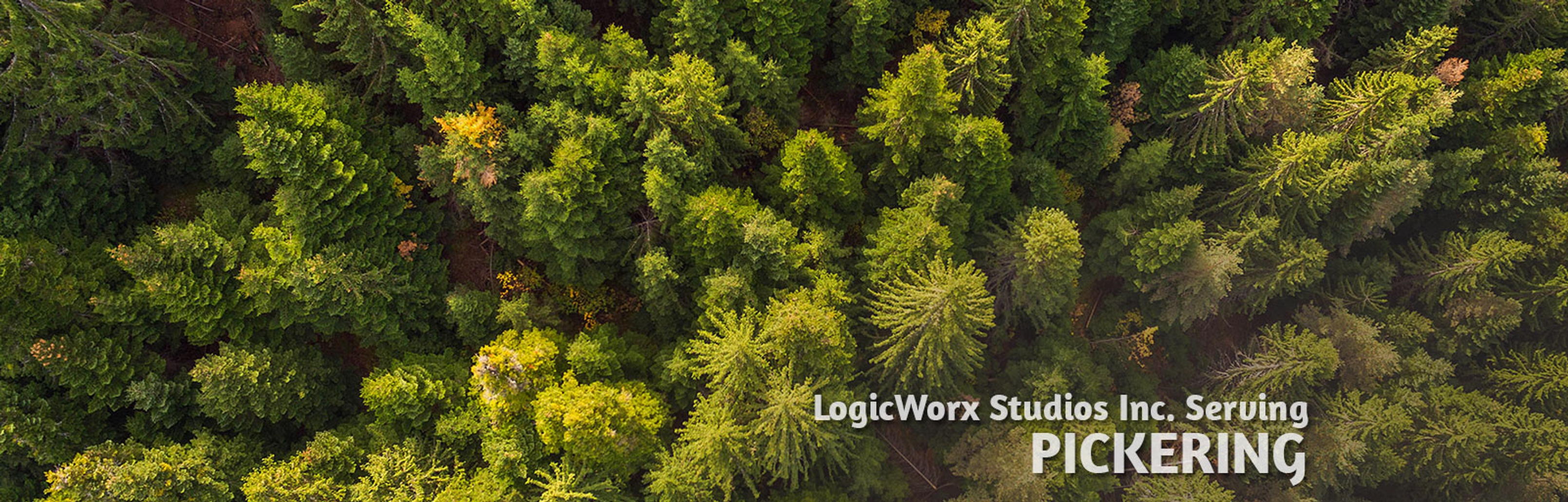 LogicWorx Studios Inc. serving Pickering