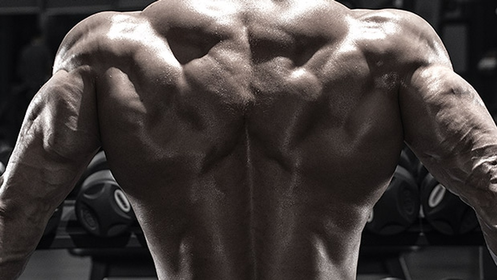 5-Ways-to-Upgrade-Your-Rear-Delt-Training