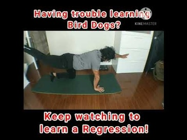 Bird Dogs Regression - Legs Only