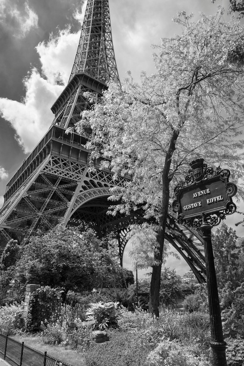 Eiffel Tower - Travel Photography Services by Matt Tibbo