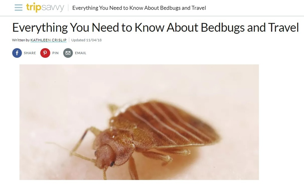 Blog by Bed Bug Heaters Dallas