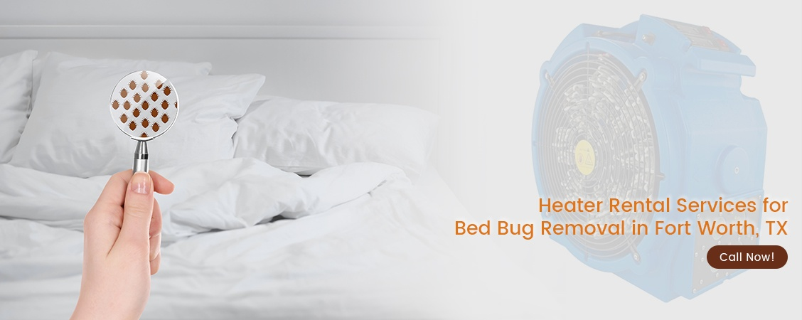 Bed Bug Removal Fort Worth, TX