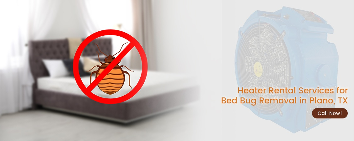 Bed Bug Removal Plano, TX