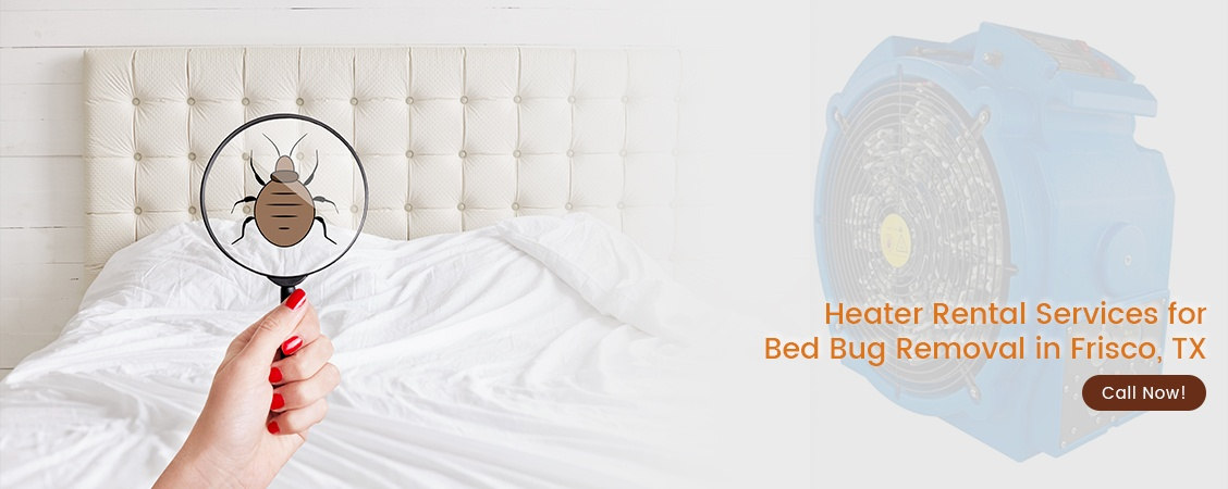 Bed Bug Removal Frisco, TX