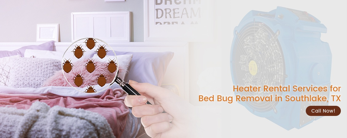 Bed Bug Removal Southlake, TX