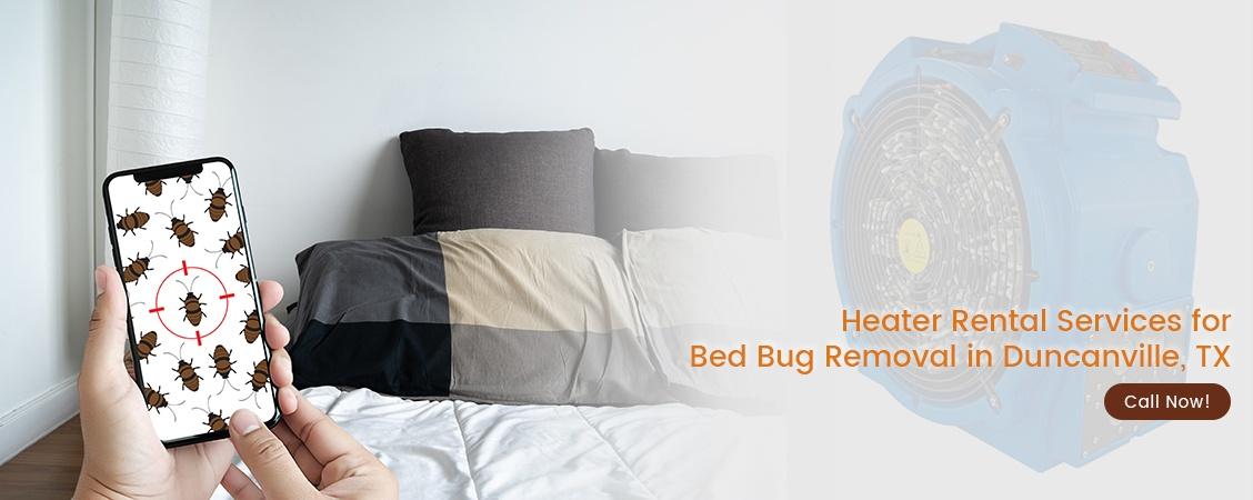 Bed Bug Removal Duncanville, TX
