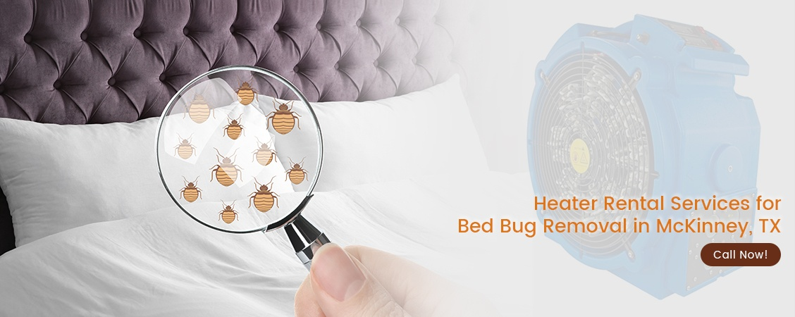 Bed Bug Removal McKinney, TX