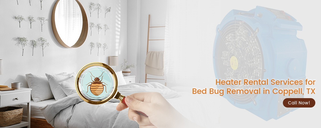 Bed Bug Removal Coppell, TX