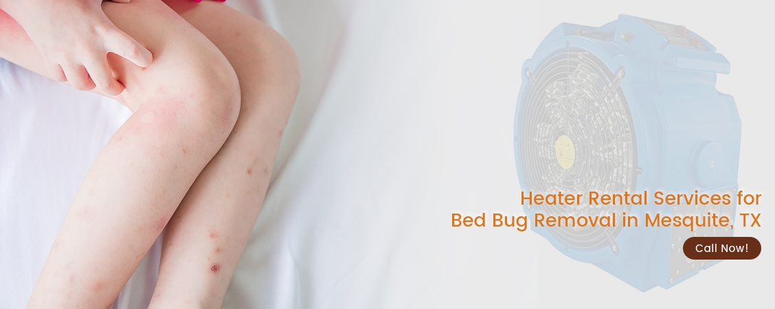 Bed Bug Removal Mesquite, TX