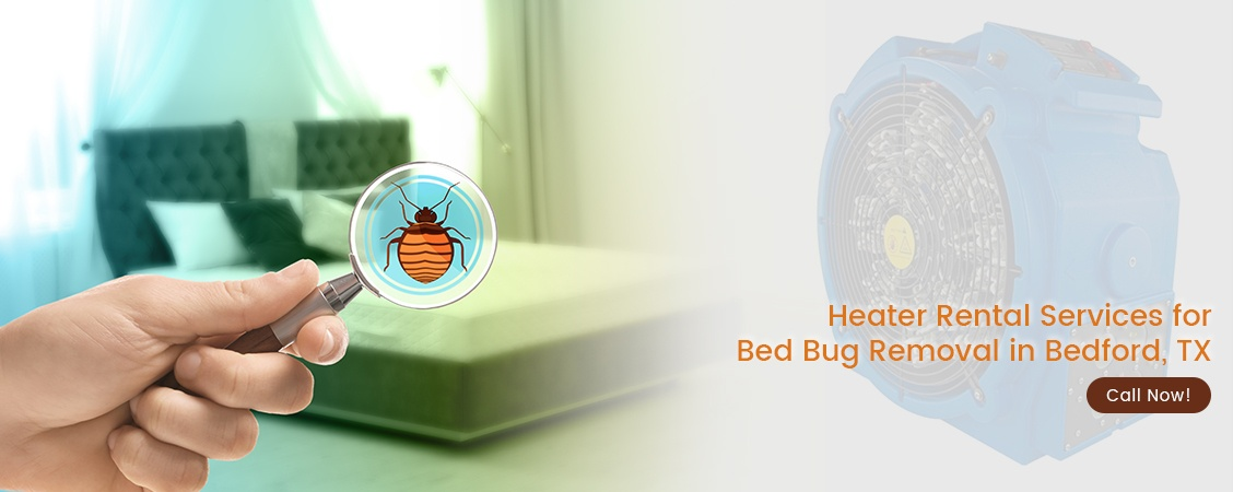 Bed Bug Removal Bedford, TX