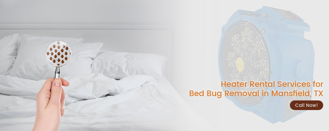 Bed Bug Removal Mansfield, TX