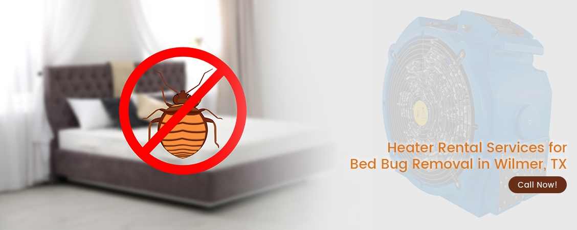 Bed Bug Removal Wilmer, TX