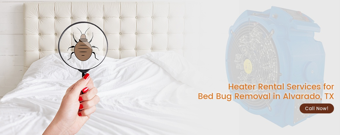 Bed Bug Removal Alvarado, TX
