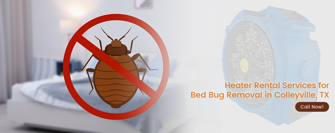 Bed Bug Removal Colleyville, TX