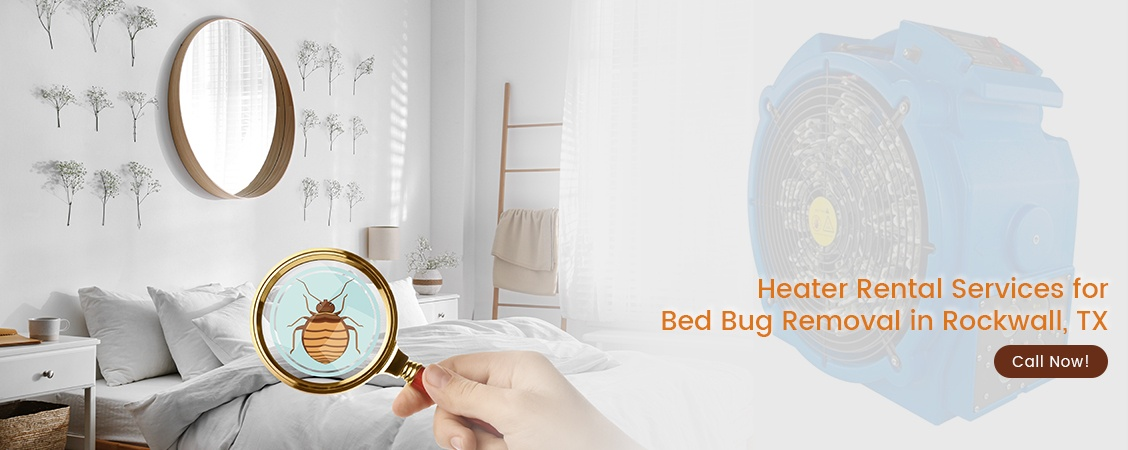 Bed Bug Removal Rockwall, TX