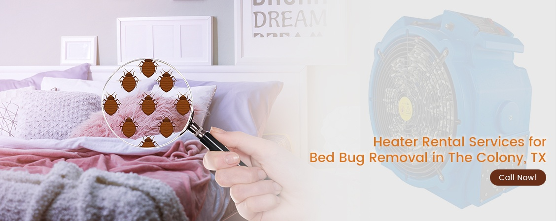Bed Bug Removal The Colony, TX