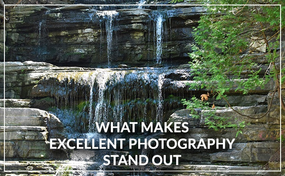 What Makes Excellent Photography Stand Out