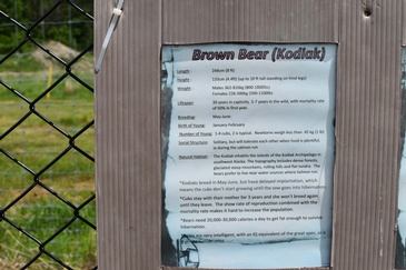 Brown Bear Information Board at a Zoo - Wildlife Photography Ottawa at Excellent Photography