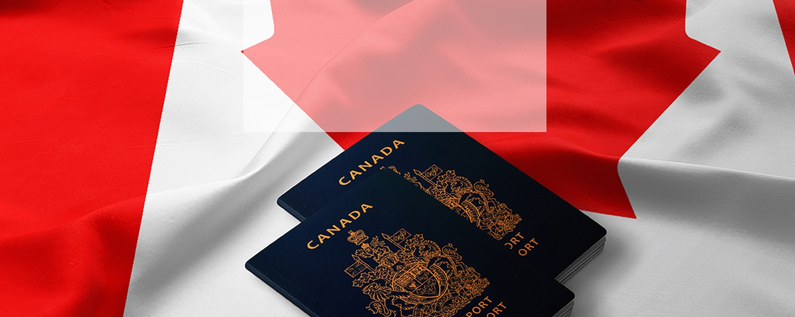 Immigration Consultation Services Vancouver by MVC Immigration Consulting - Immigrate to Canada