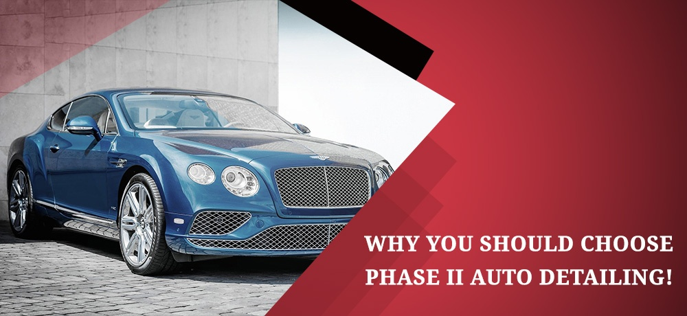 Phase-II-Auto---Month-11---Blog-Banner.jpg