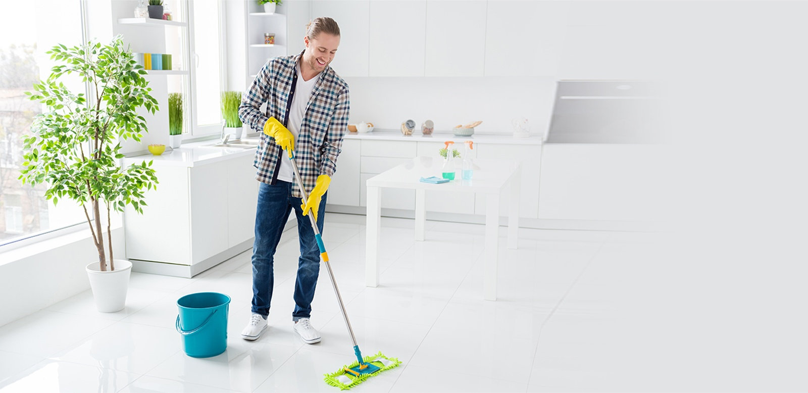 Cleaning Services Illinois