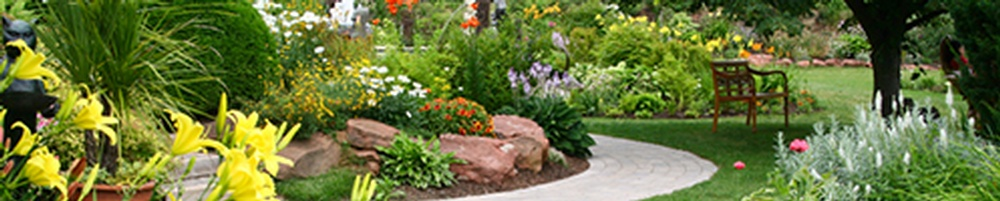Blog by Green FX Landscaping Inc.