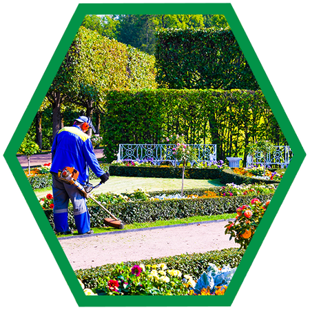 Commercial/Retail Landscaping Services