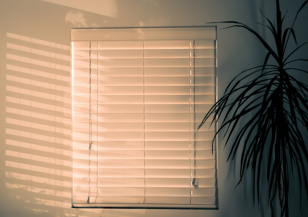 What are the different types of roller blinds