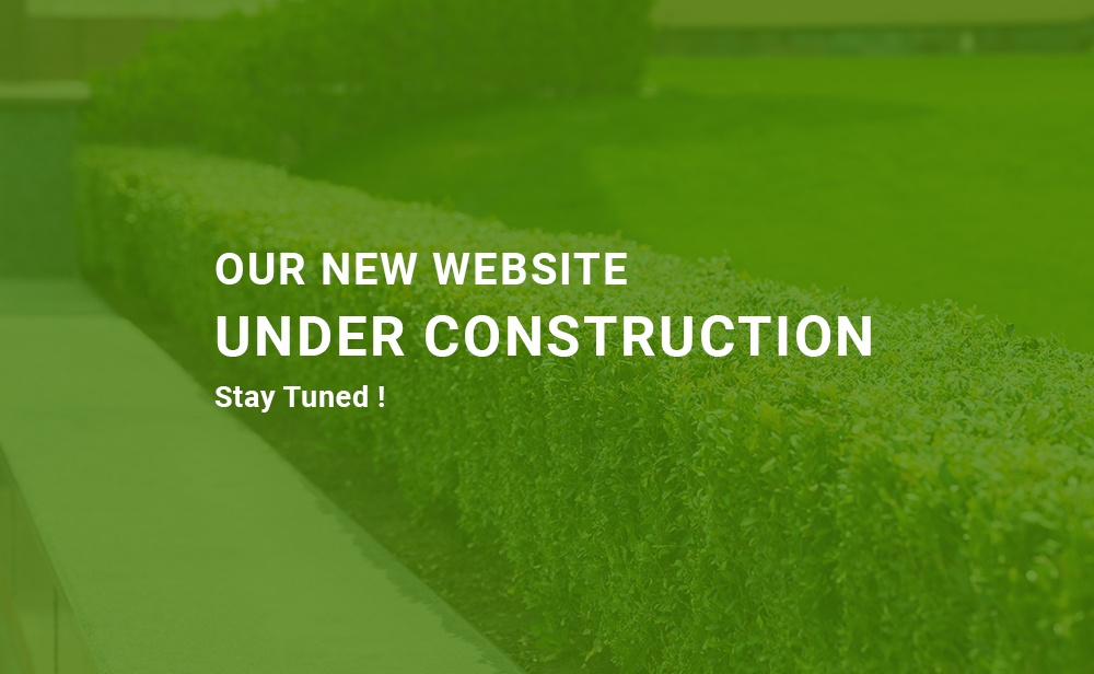 new-website-under-construction.jpg
